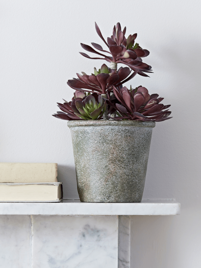 Faux Potted Burgundy Tipped Succulent