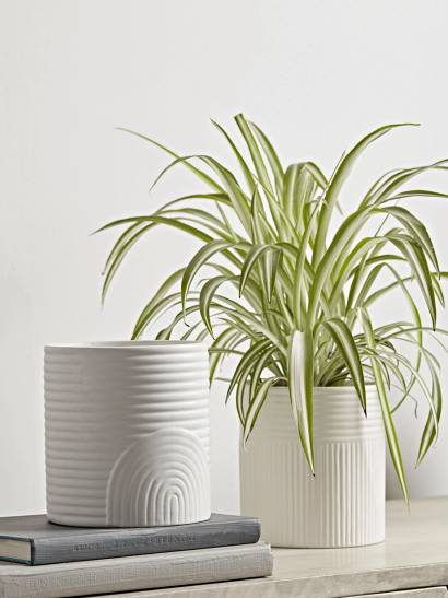 Two White Ribbed Planters