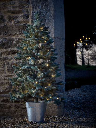 Indoor Outdoor Fabulously Full Fir Tree - Potted