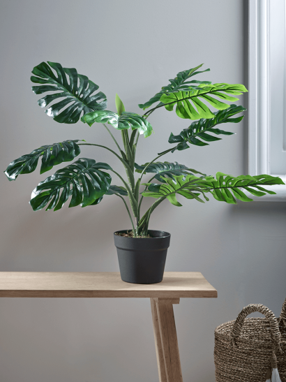Faux Potted Monstera - Small
