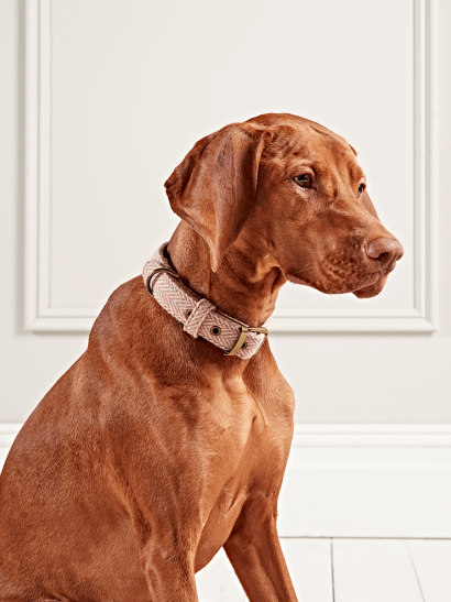 Blush Herringbone Dog Collars