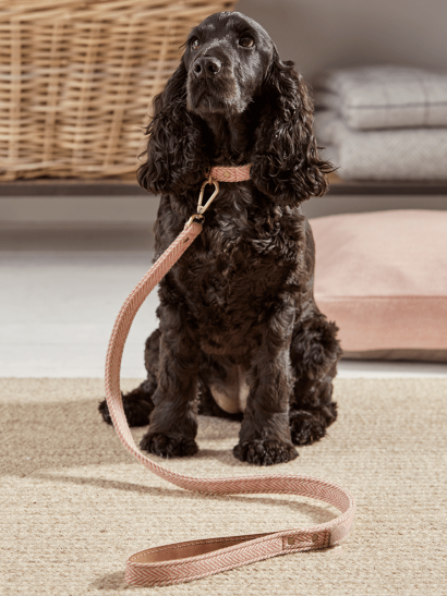 Blush Herringbone Dog Lead