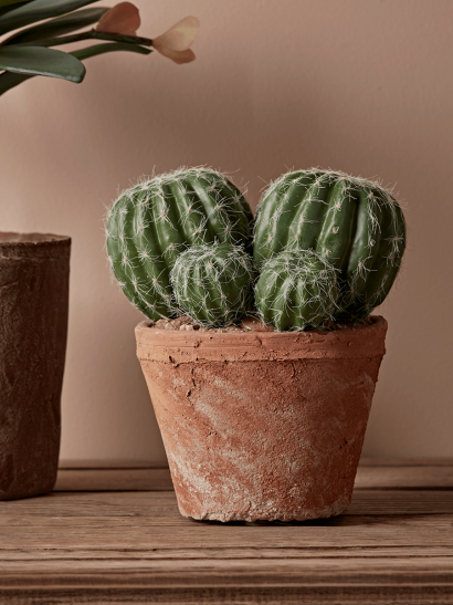 Faux Potted Cluster Cactus