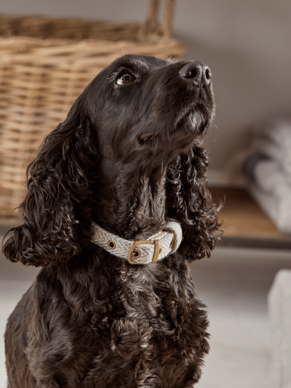 Grey Herringbone Dog Collars