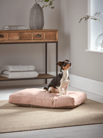 Herringbone Wool Dog Bed - Blush
