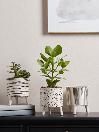 NEW Three Monochrome Standing Planters
