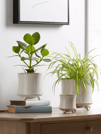 NEW Three Speckled Stoneware Standing Planters