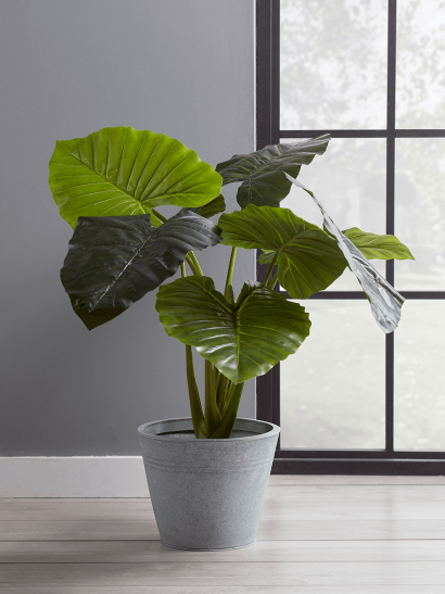 NEW Faux Potted Taro