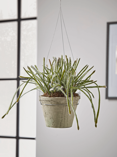 NEW Hanging Faux Potted Trailing Cactus