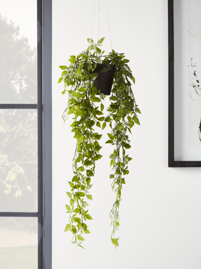 NEW Faux Hanging Pothos