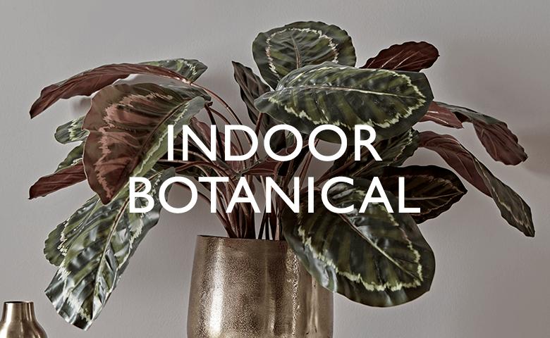 Indoor Botanical